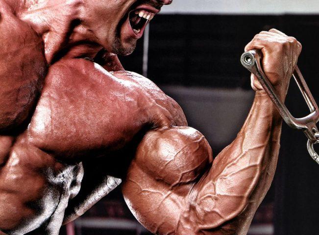 Biceps Pump (2)
